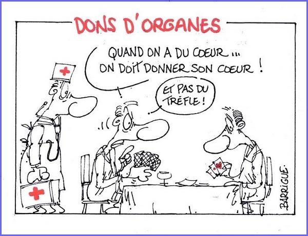 Barrigue et le don d'organes